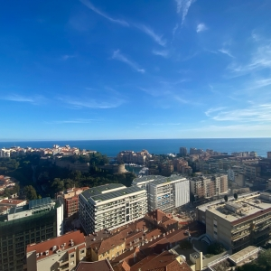 Dotta 4 rooms apartment for rent - EDEN TOWER - Moneghetti - Monaco - img4335