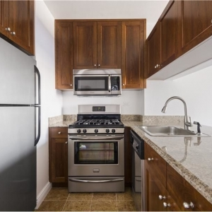 Dotta Appartement de 2 pieces a vendre - THE STANFORD - Nomad - New York  - img396035601