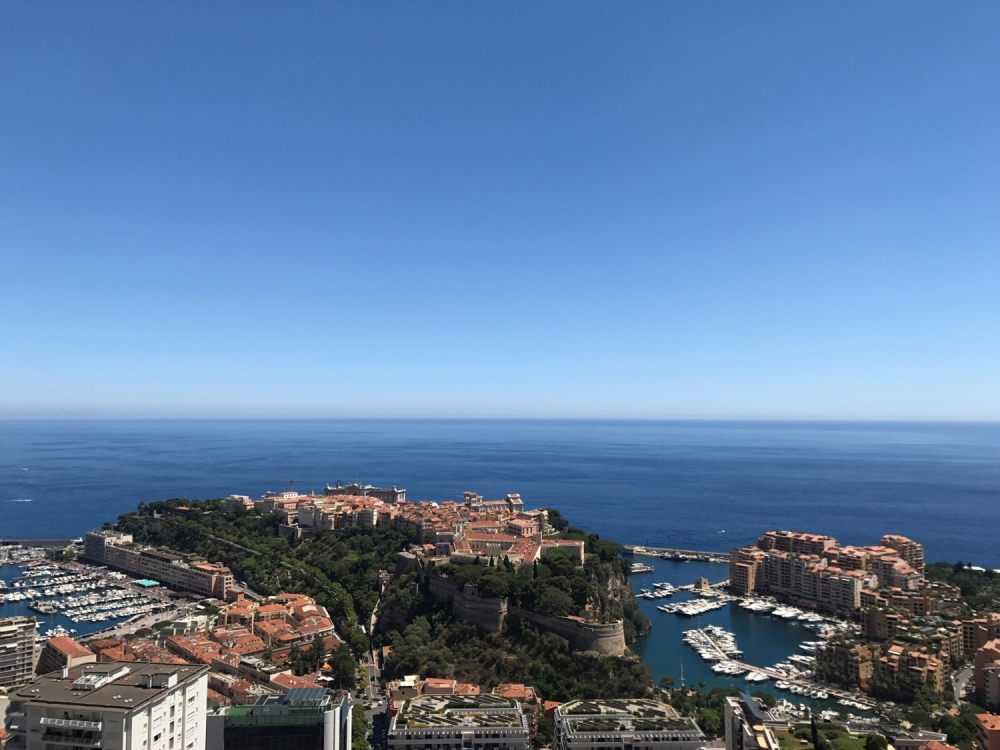 Dotta 5 rooms apartment for sale - L'EXOTIQUE - Jardin Exotique - Monaco - imgmer