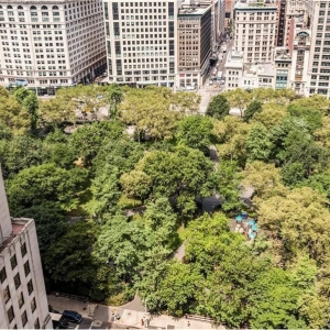 Dotta 2 rooms apartment for sale - THE STANFORD - Nomad - New York  - img396035577